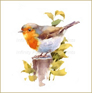 A4 Print - Robin on Stump