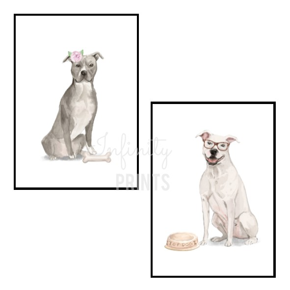 A5 Print - American Staffordshire Terrier Collection