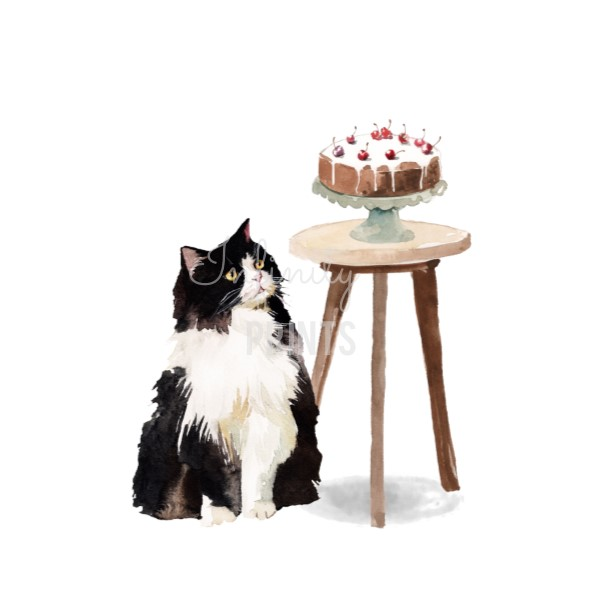 A5 Print - Cat with Cake