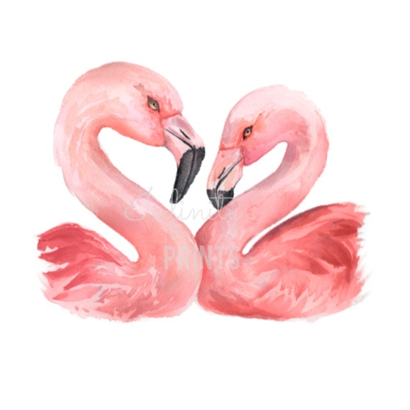 A5 Print - Flamingo Pair